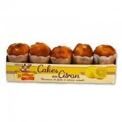 Cakes Ecureuils citron x 5